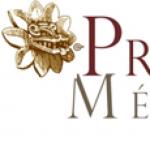 cropped-logotipo-presenciamexico-1.png