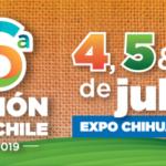 BANNERS-Convención Chile_300x100